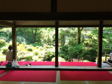 京都ふりかえり(写真多めです)